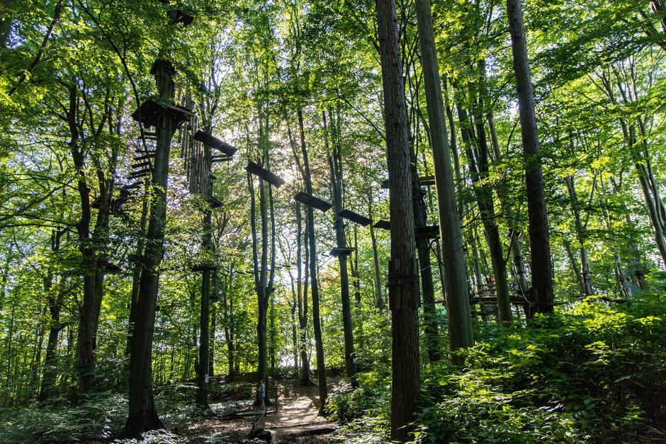 Gegen Abend kehrt Ruhe in den Kletterwald ein