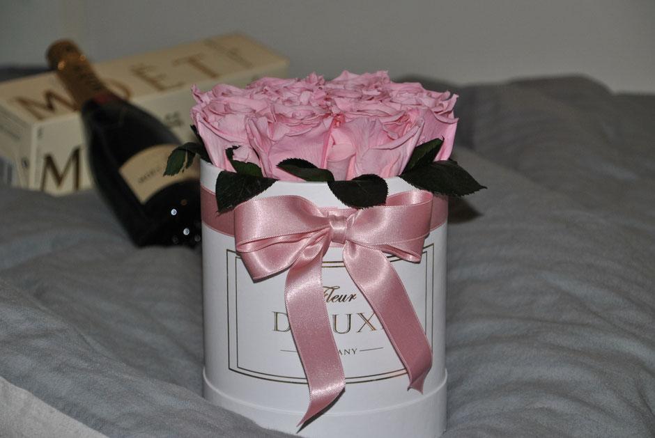 Infinity Flowerbox, Rosenbox mit Pink Champagne Rosen