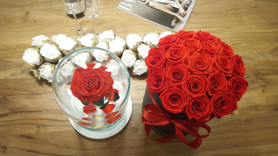 """""""Die Schöne und das Biest"""" Rose in Glass Dome and Flowerbox"""