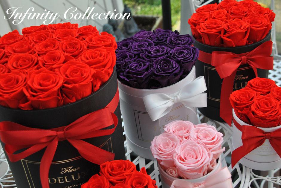 ewige rose in glasglocke konservierte rosen in der box. Black Bedroom Furniture Sets. Home Design Ideas