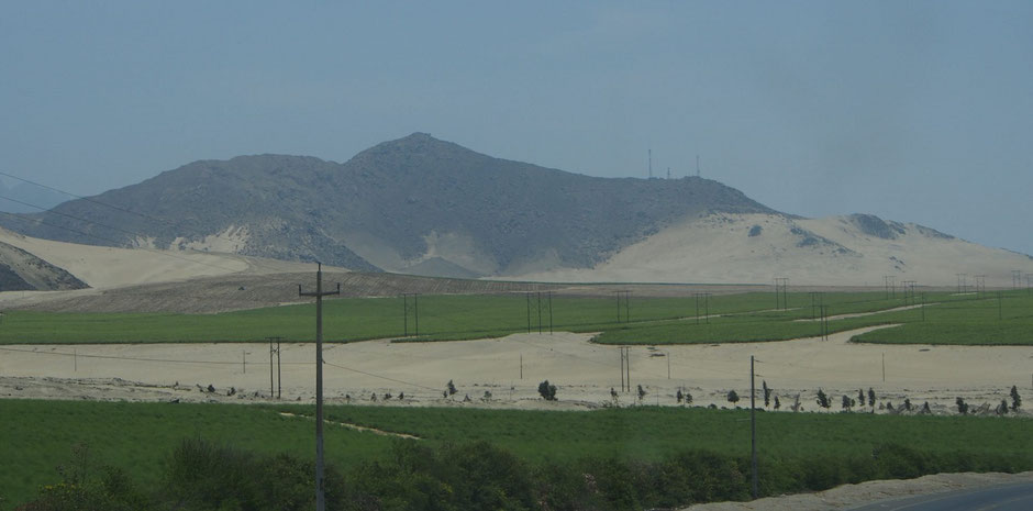Photo 2: Andes pacific plains, semi-arid climate, has been farmed intensely since 1990. (@Ëvelyne Mesclier, October 2014)