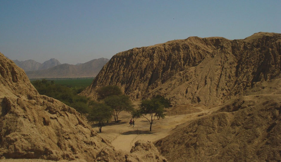 View of the Sipán site (Lambayeque Valley). Photo: C. Lara