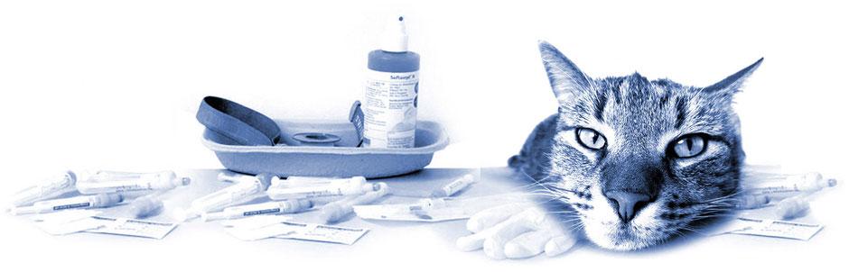 Kleintierpraxis von Tierärztin Dr. Birge Herkt