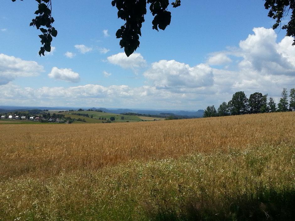 Panoramaweg über Lichtenhain