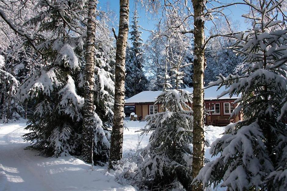 Winterlandschaft mit Älmhult Schwedenhaus von Berg