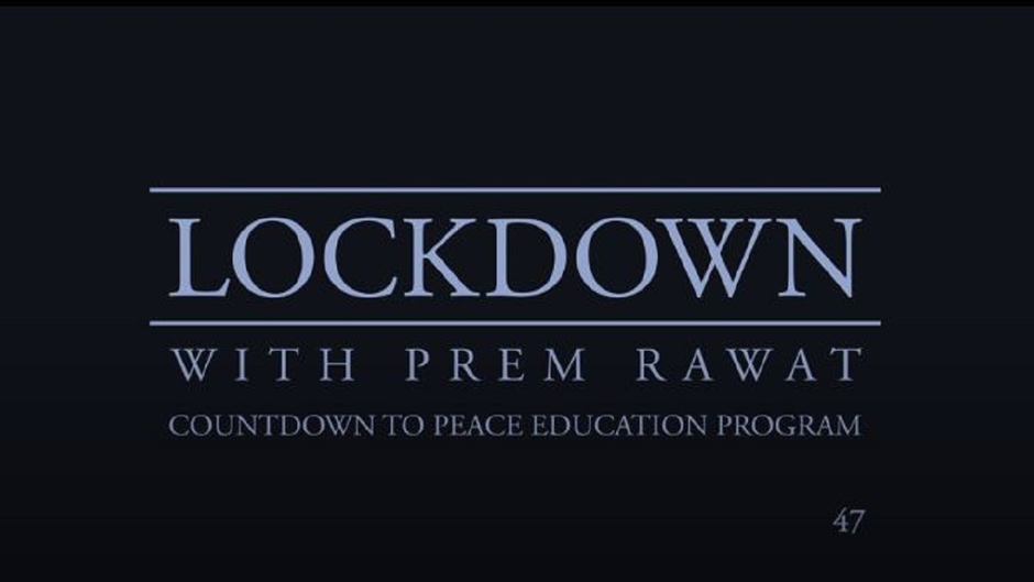 Lockdown Tag 47