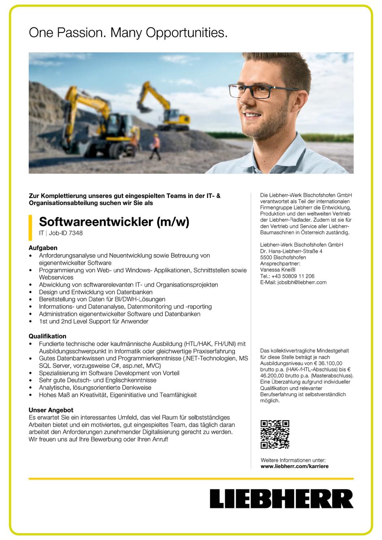 Software Developer Jobs - Softwareentwickler - Liebherr - Bischofshofen - Salzburg