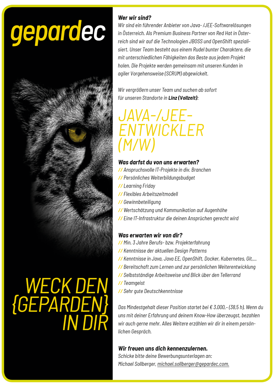 Software Developer Jobs - Java/Jee-Entwickler - Gepardec IT Services - Linz - Oberösterreich -1