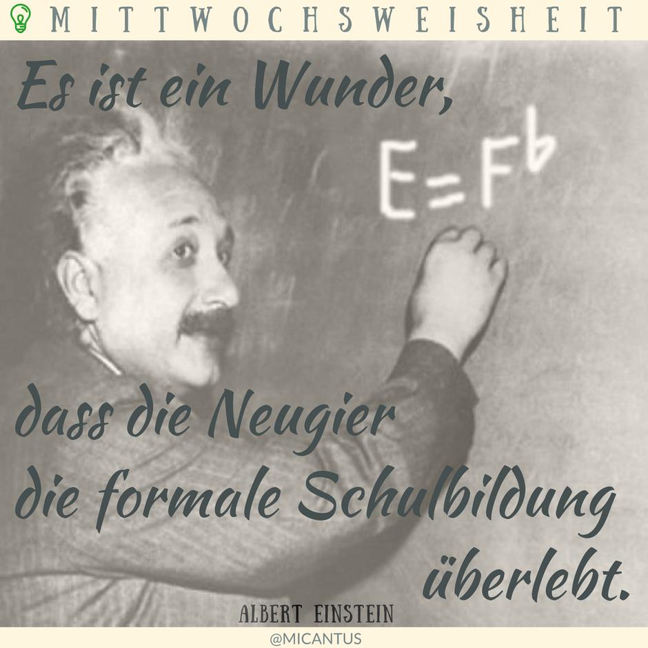 Es ist ein Wunder, dass die Neugier die formale Schulbildung überlebt. Einstein. Zitat, Quote, Klavier spielen lernen, Singen lernen, Wien, Klavierunterricht, Gesangsunterricht, Musiktheorie, Musikschule