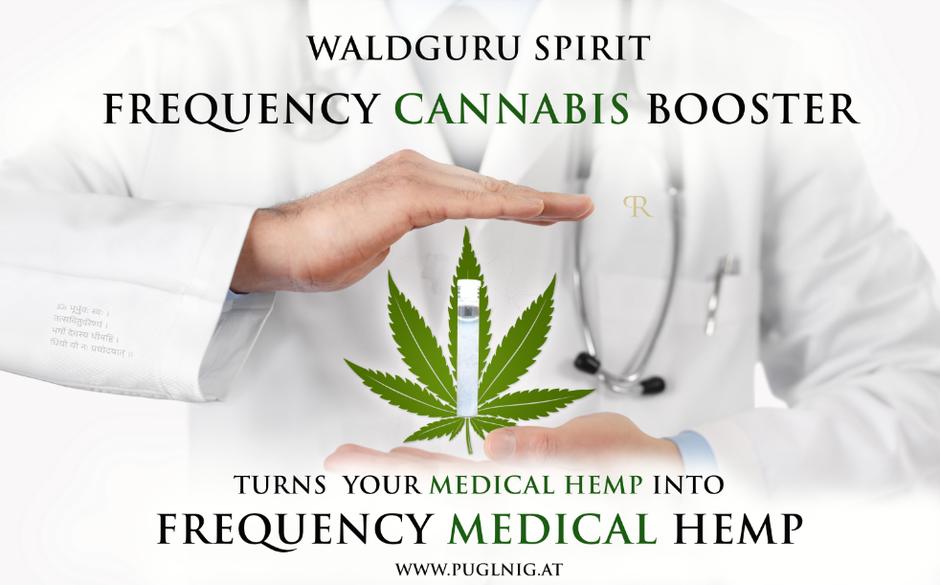 medical cbd hemp, medical hemp, waldguru´s frequeny cannabis booster technology, frequency medical marijuana, anti cancer frequency marijuana, frequenz cannabis booster, Robert Puglnig,  www.puglnig.at, high spirit cbd,