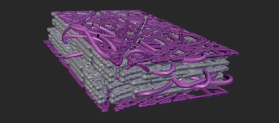 Représentation visuelle d'un film de nanocelluloses dont la surface a été greffée de pénicilline