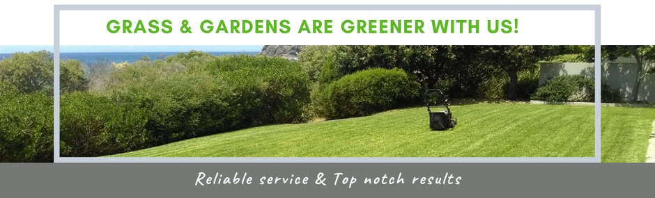 Clip n Clean grass & gardens  are greener with us!