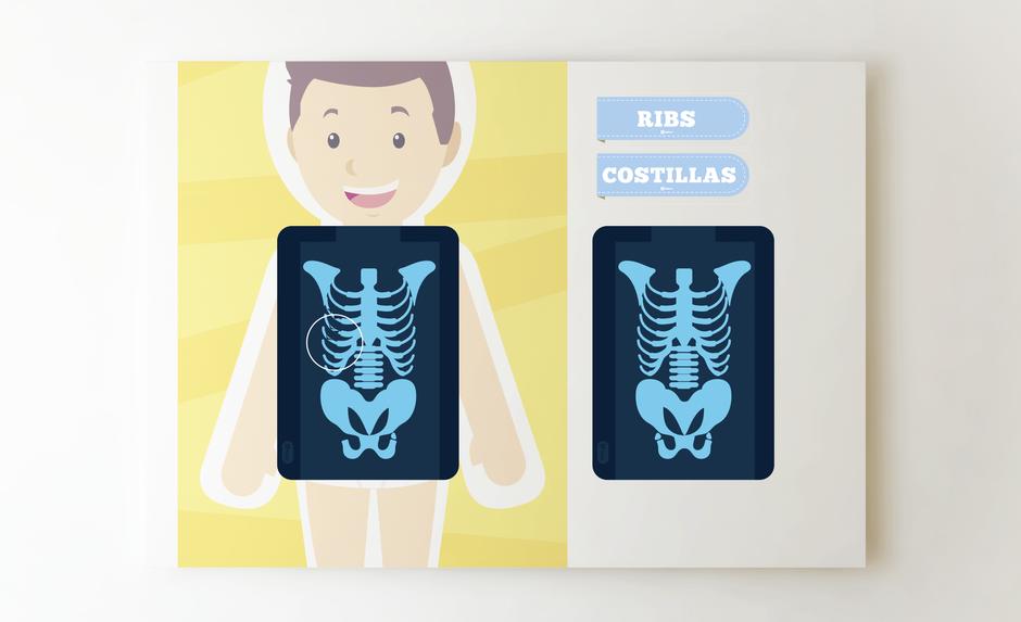aprende cuerpo humano para imprimir mural gratis aula360 profesores