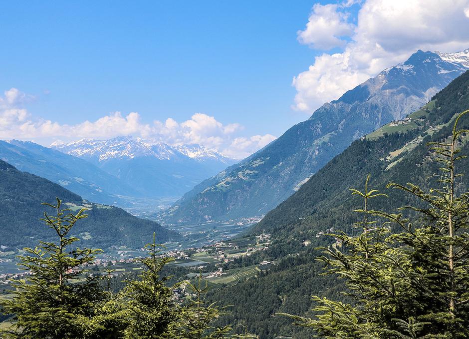 Meran Wandern mit Hund Waalwege Südtirol Bergurlaub mit Hund