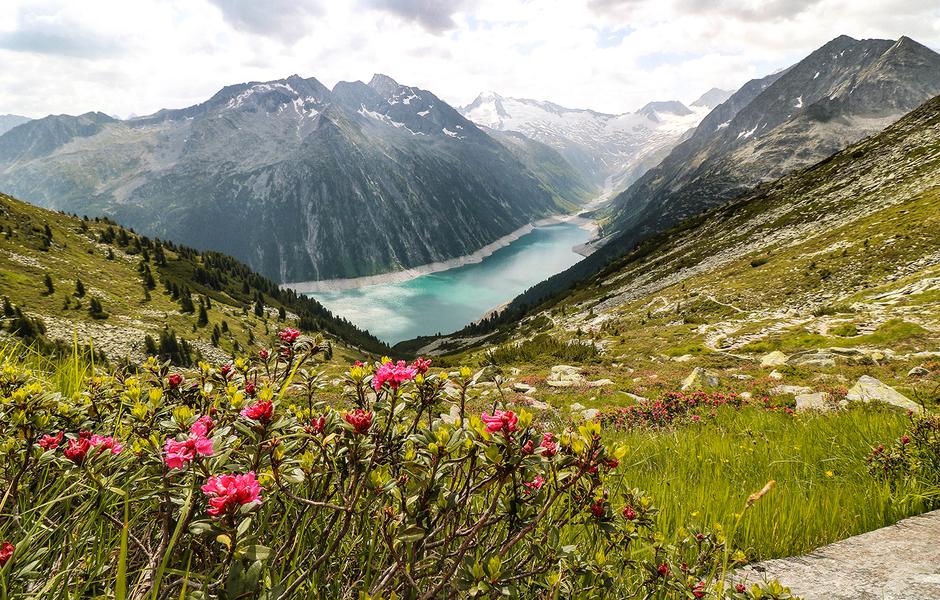Zillertal Schlegeisstausee Tirol Zillertaleralpen Bergurlaub mit Hund Urlaub mit Hund Wandern mit Hund
