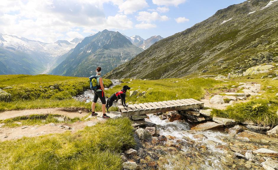 Bergurlaub mit Hund im Zillertal  Urlaub mit Hund Wandern mit Hund Tirol