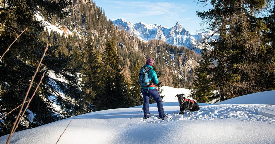 Bergwandern mit Hund Hochkönig Schneeschuhwandern