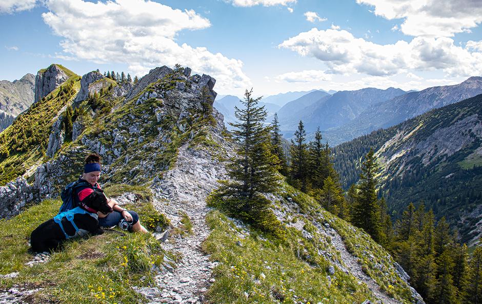 Wandern mit Hund Bergurlaub mit Hund Wandern in den Ammergauer Alpen Kesselbergrunde