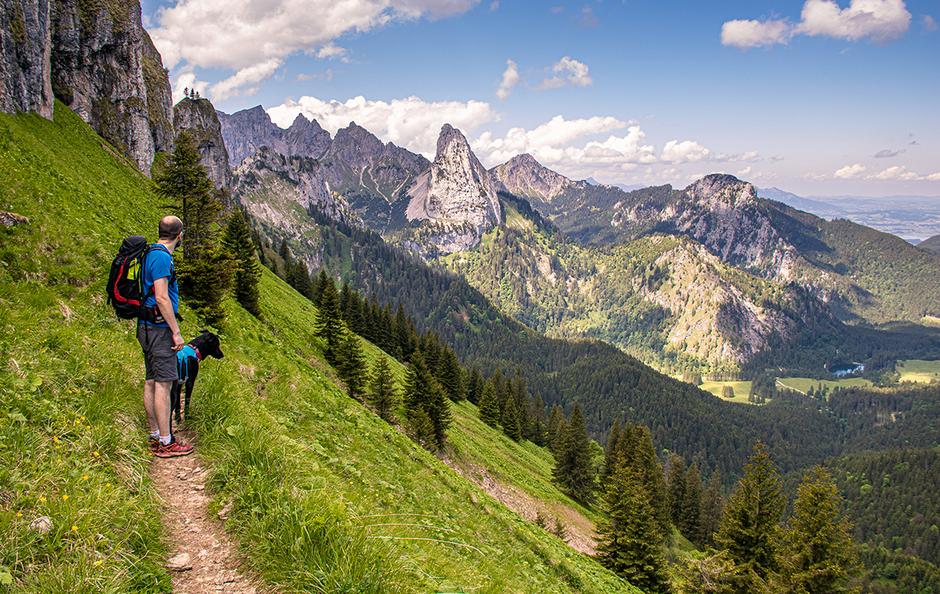 Wandern in Bayern, Wandern mit Hund, Urlaub mit Hund, Bergurlaub mit Hund