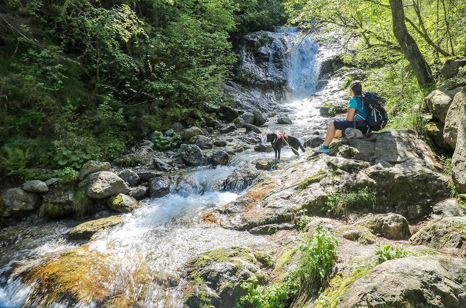 Bergurlaub mit Hund Urlaub mit Hund Wandern mit Hund Wasserfall Südtirol Schenna Meran