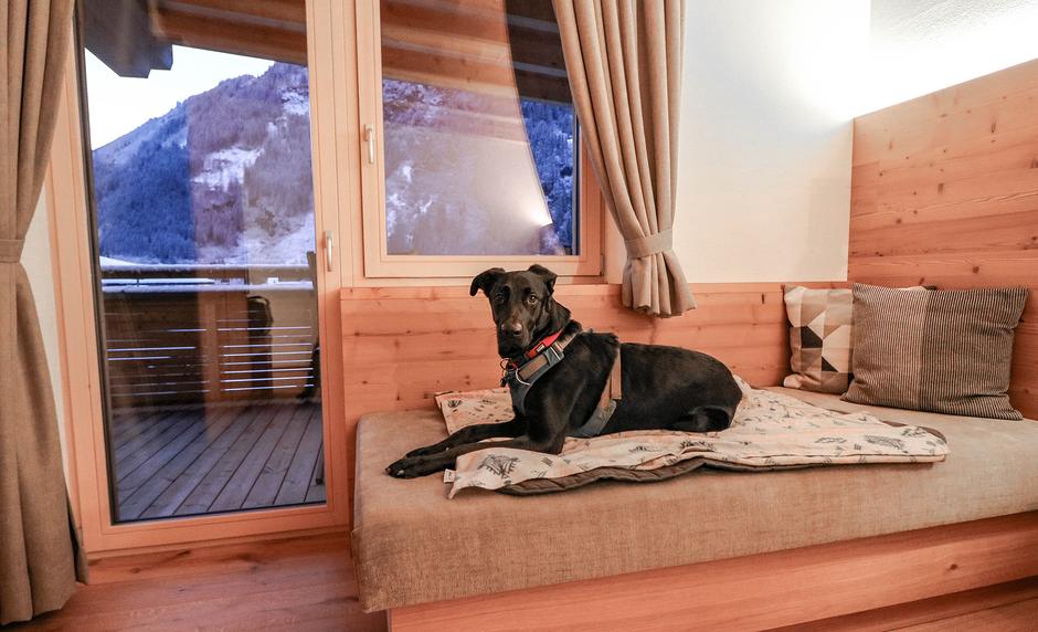 Hundefreundliche Hotels Urlaub mit Hund Bergurlaub mit Hund Urlaub im Zillertal