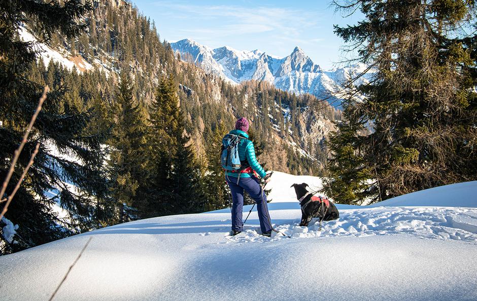 Hochkönig Mandlwände Salzburg Bergurlaub mit Hund, Bergurlaub mit Hund, Wandern mit Hund, Urlaub mit Hund