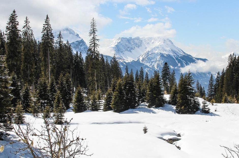 Zugspitze Ehrwald Tirol Wandern mit Hund in Tirol