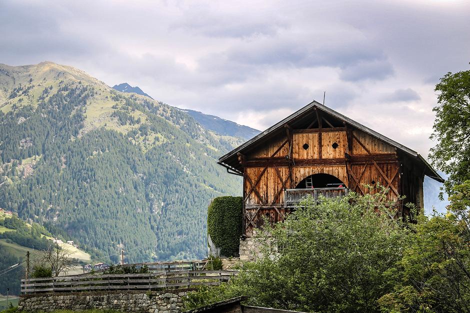 Waalwege Südtirol Schennawaalweg Taser Schenna Wandern mit Hund Bergurlaub mit Hund