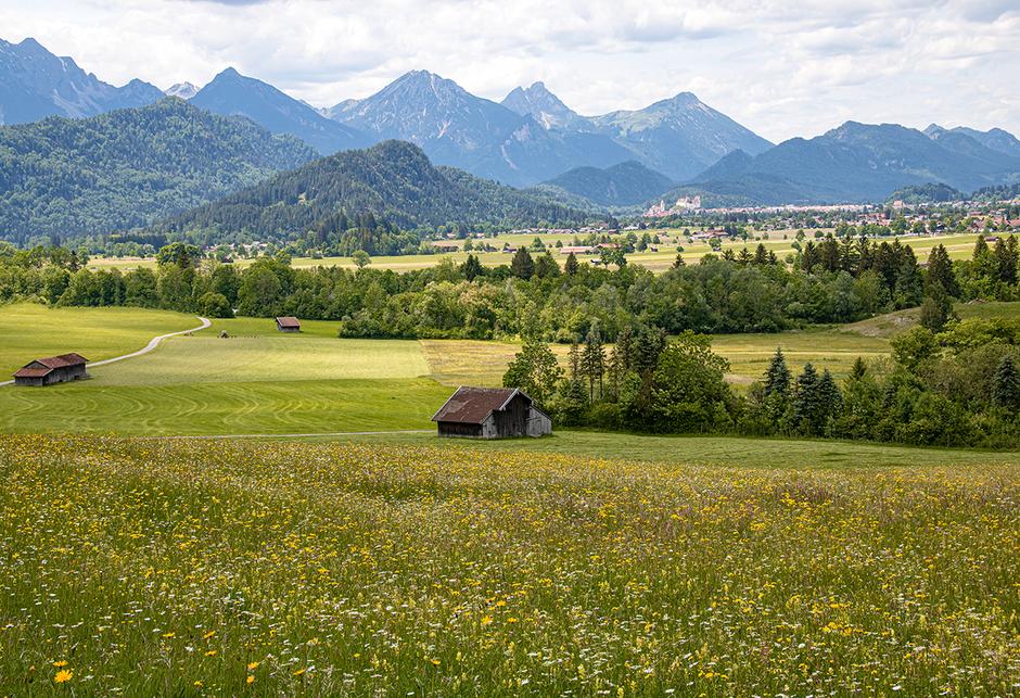 Füssen Tegelberg Ostallgäu, Wandern in Bayern, Wandern mit Hund, Urlaub mit Hund, Bergurlaub mit Hund, Wandern im Allgäu