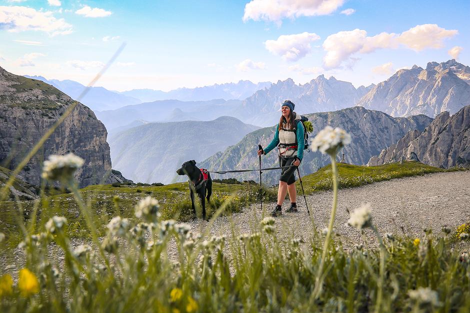 Bergurlaub mit Hund Urlaub mit Hund Wandern mit Hund