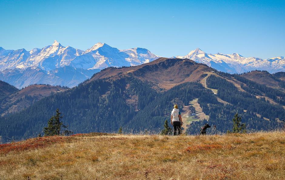 Hochkeil Wandern mit Hund Hochkönig Salzburger Land