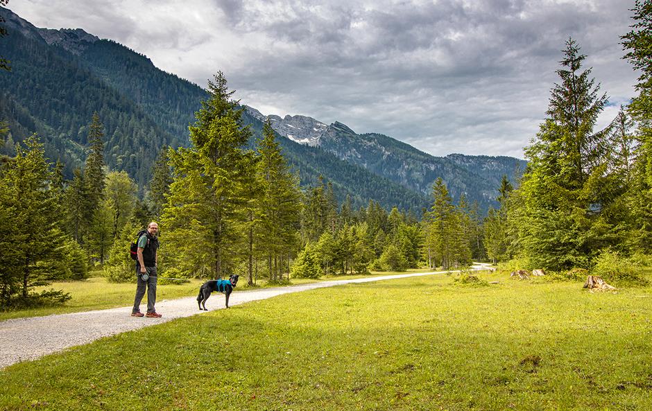 Klausbachtal Hintersee Berchtesgaden Nationalpark Hängebrücke, Wandern in Bayern, Wandern mit Hund, Urlaub mit Hund, Bergurlaub mit Hund
