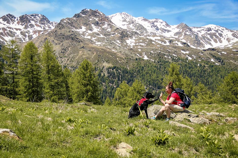 Bergurlaub mit Hund Urlaub mit Hund Wandern mit Hund Ultental Südtirol