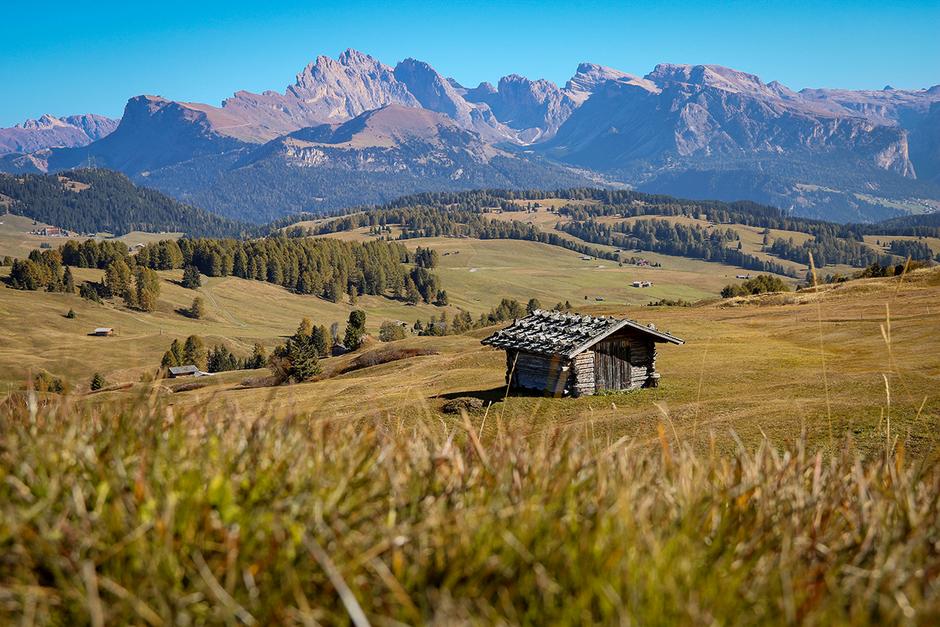Seiser Alm Seis Compatsch Bergurlaub mit Hund Wandern in Südtirol