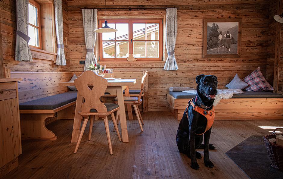 Alpzitt Chalets Allgäu Luxuchalets Burgberg Übernachten mit Hund Urlaub mit Hund Bayern  Bergurlaub mit Hund Hundefreundliche Hotels