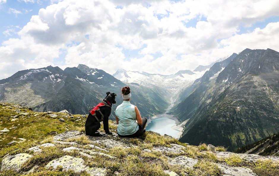 Bergurlaub mit Hund Wandern mit Hund Urlaub mit Hund Wandern im Zillertal