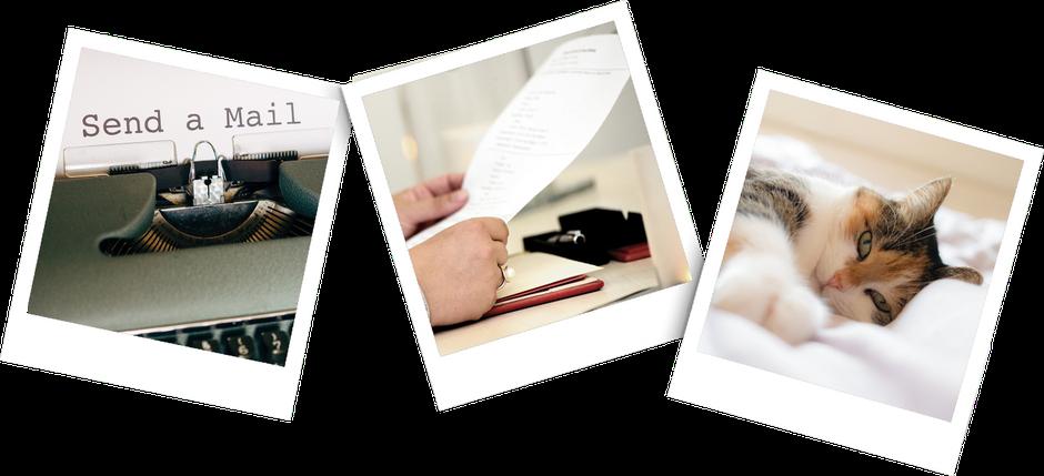 Drei Polaroid Bilder, eines mit der Aufforderung Send a Mail, eines mit einem Blatt Papier in der Hand und eines mit einer liegenden Katze.