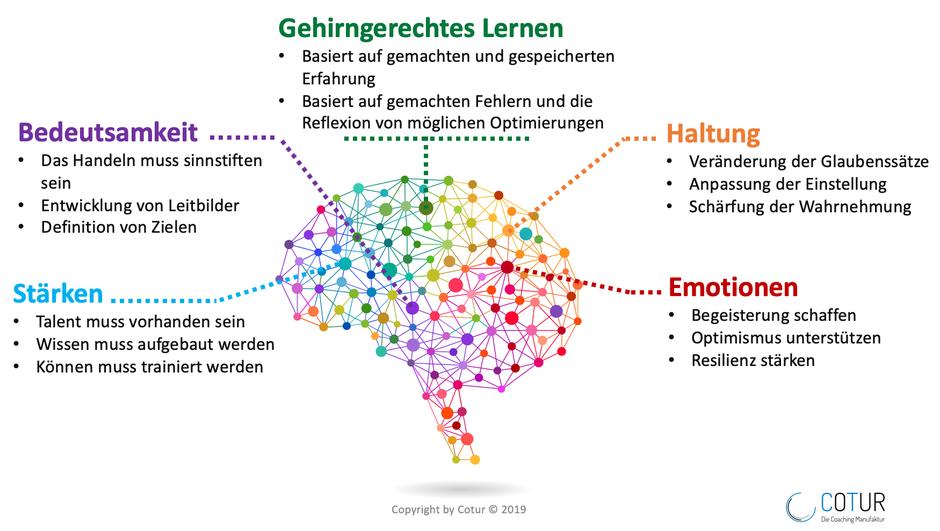 Gehirngerechtes Lernen - Die fünf Aspekte
