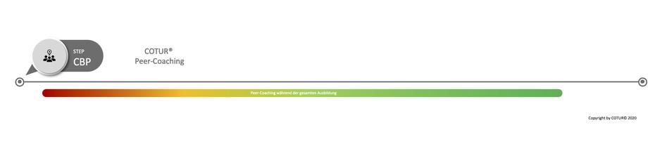 Leadershape by COTUR® - Peer -Coaching
