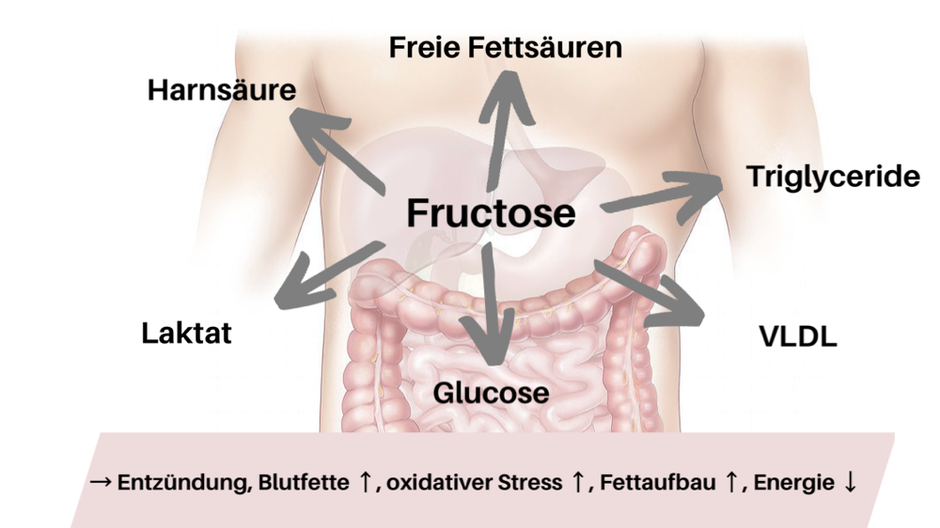 Dong-Mei Zhang, Rui-Qing Jiao and Ling-Dong Kong (2017). High Dietary Fructose: Direct or Indirect Dangerous Factors Disturbing Tissue and Organ Functions. Nutrients 2017, 9, 335; doi:10.3390/nu9040335