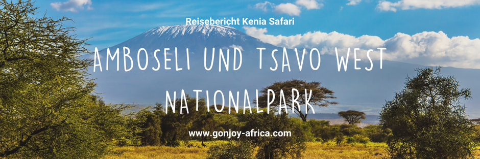 Kenia Safari Amboseli und Tsavo West