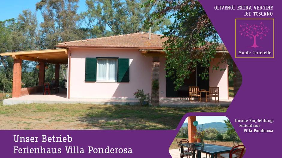 Ferienhaus Villa Ponderosa