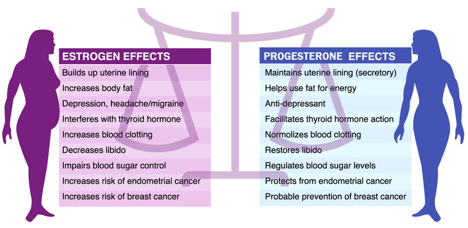 The increasing estrogenation of society creates multiple problems including an increased chance of cancer