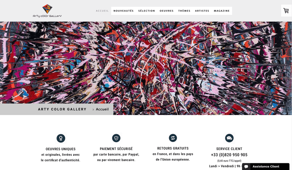 Page d'accueil du site de vente d'art contemporain Arty Color Gallery