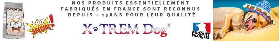 croquette française