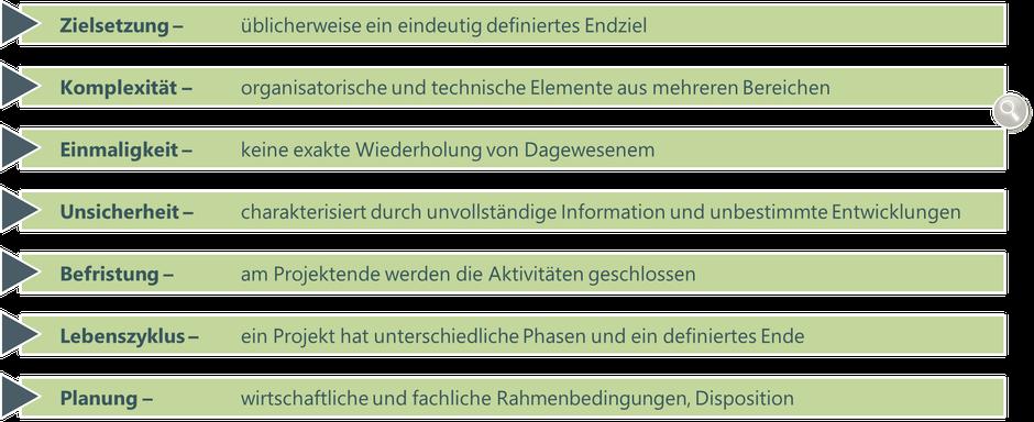 Abbildung 1: Charakteristik von Projekten