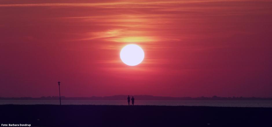 Ein roter Himmel. Ein wunderschöner Sonnenuntergang. Auf dem Deich stehen zwei Personen, direkt unter der Sonne und genießen achtsam den Moment.
