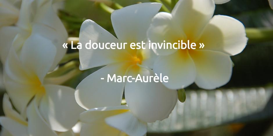 « La douceur est invincible.» - Marc-Aurèle