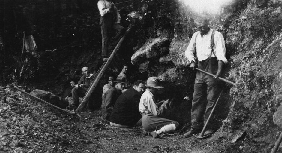 Fouilles, Abri néanderthal des Merveilles, Sergeac, site de Castel-Merle, Dordogne