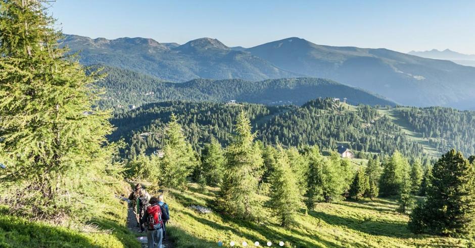 Wandern Turracherhöhe, Zirnbenwald, Zirbenwald Wandern, Seerundweg Turracher Höhe, Alpenjuwele, Alpenjuwel